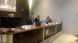 INAPP - III NDC Conference - 17